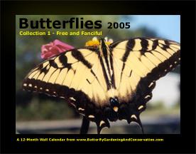 Butterfly Calendar 1 cover