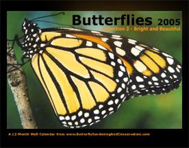 Butterfly Calendar 2 cover