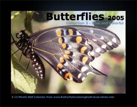 Butterfly Calendar 3 cover