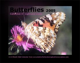 Butterfly Calendar 4 cover