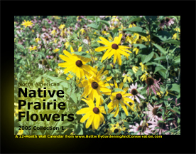 Prairie Flower Calendar 1 cover