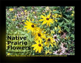 Prairie Flower Calendar 1 cover