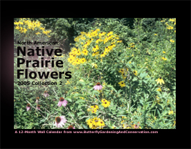 Prairie Flower Calendar 2 cover