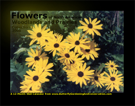 Prairie and Woodland Flowers Calendar 3 cover
