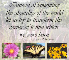 Instead of lamenting the absurdity of the world let us try to transform the corner of it into which we were born. - Andre Maurois